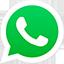 Whatsapp Octo Brasil